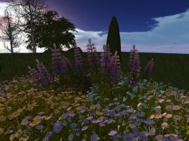 med garden